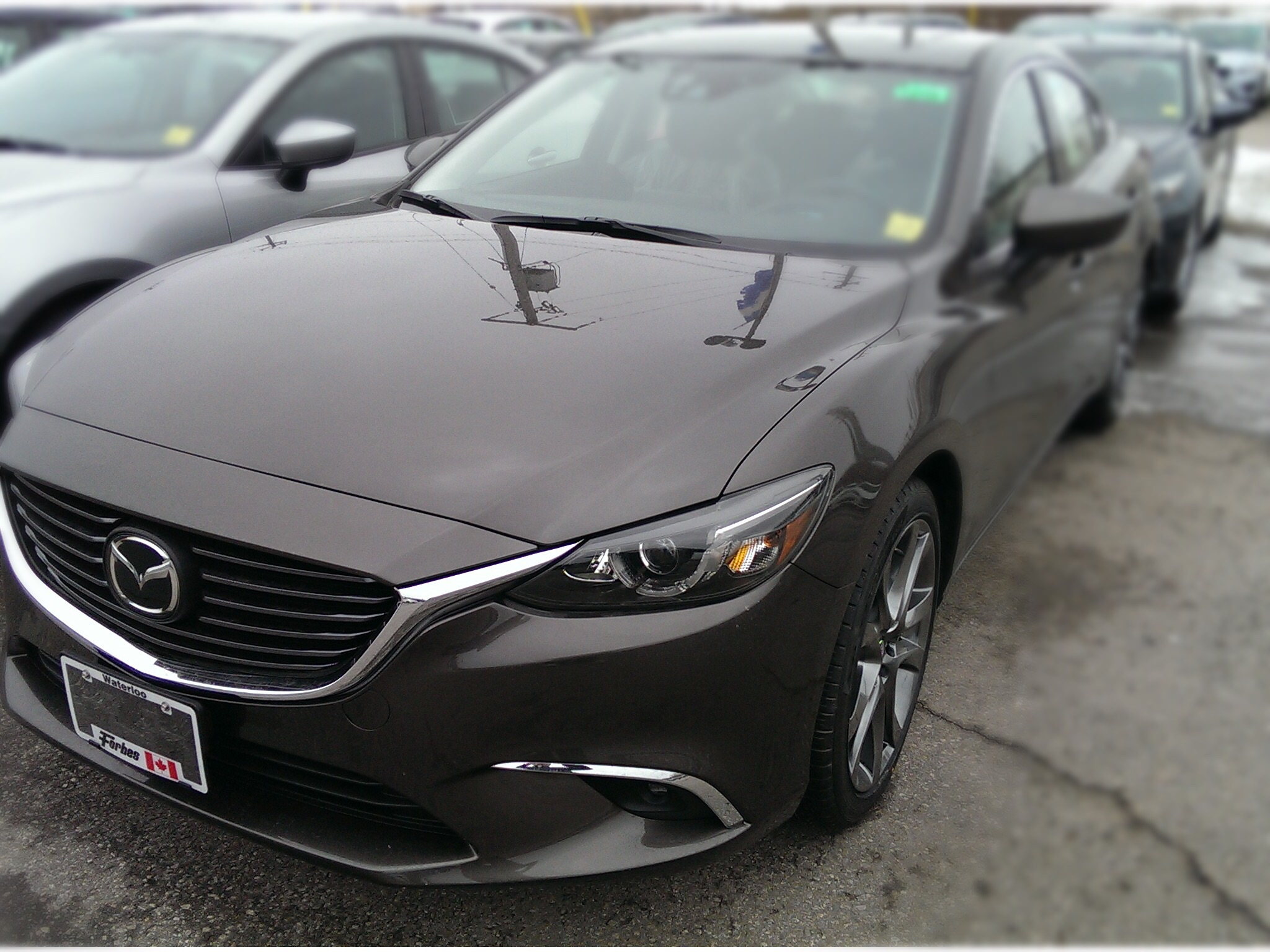 Agonizing Over ColorOpinions Please  Mazda 6 Forums  Mazda 6