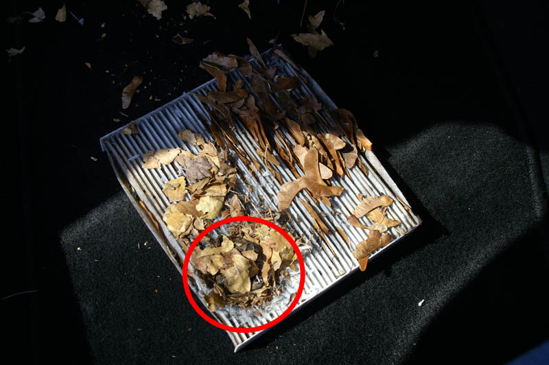 How To Replacing The Incabin Air Filter Page 2 Mazda 6 Forums Rhforummazda6club: Mazda Cabin Air Filter Location At Elf-jo.com